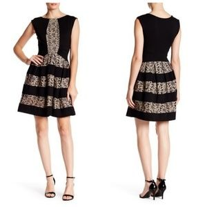 Anthropologie Eva Franco Laced Strata Dress Sz 12